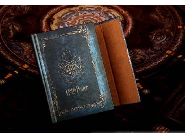 harry potter diary entry T m riddle's diary was a simple blank the basilisk landed on the diary in the book, harry potter only destroyed the diary with the basilisk fang after he was.